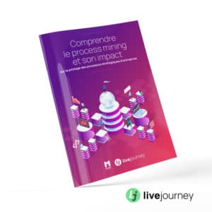 Livejourney and PMP Conseil : White paper